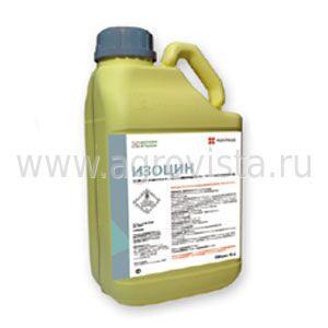 изоцин инструкция - фото 3